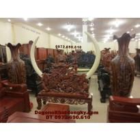 Giá để ngà voi, Dogonoithatdongky.com GN11